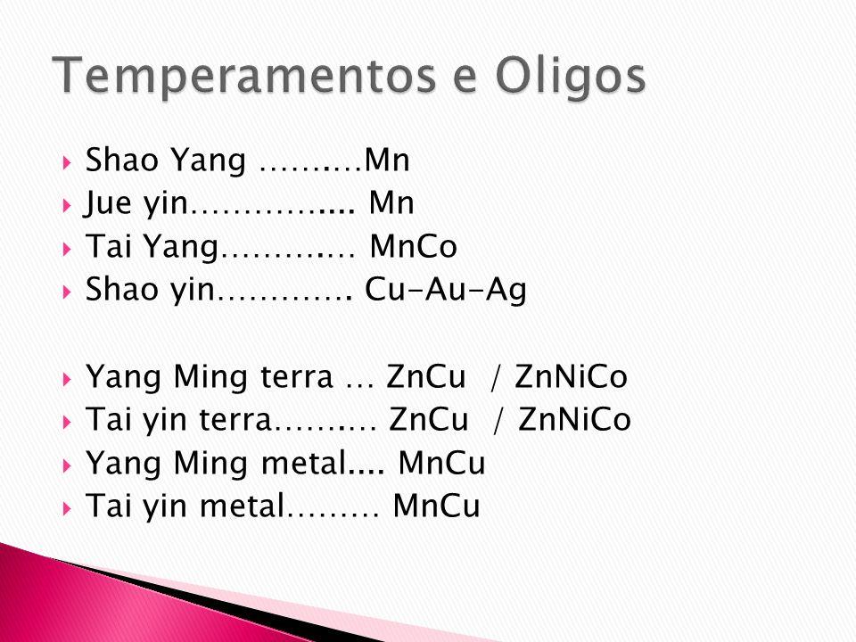 Shao Yang …….…Mn Jue yin………….... Mn Tai Yang……….… MnCo Shao yin…………. Cu-Au-Ag Yang Ming terra … ZnCu / ZnNiCo Tai yin terra…….… ZnCu / ZnNiCo Yang Min