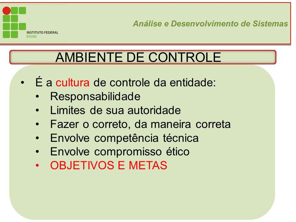 12 AMBIENTE DE CONTROLE É a cultura de controle da entidade: Responsabilidade Limites de sua autoridade Fazer o correto, da maneira correta Envolve co