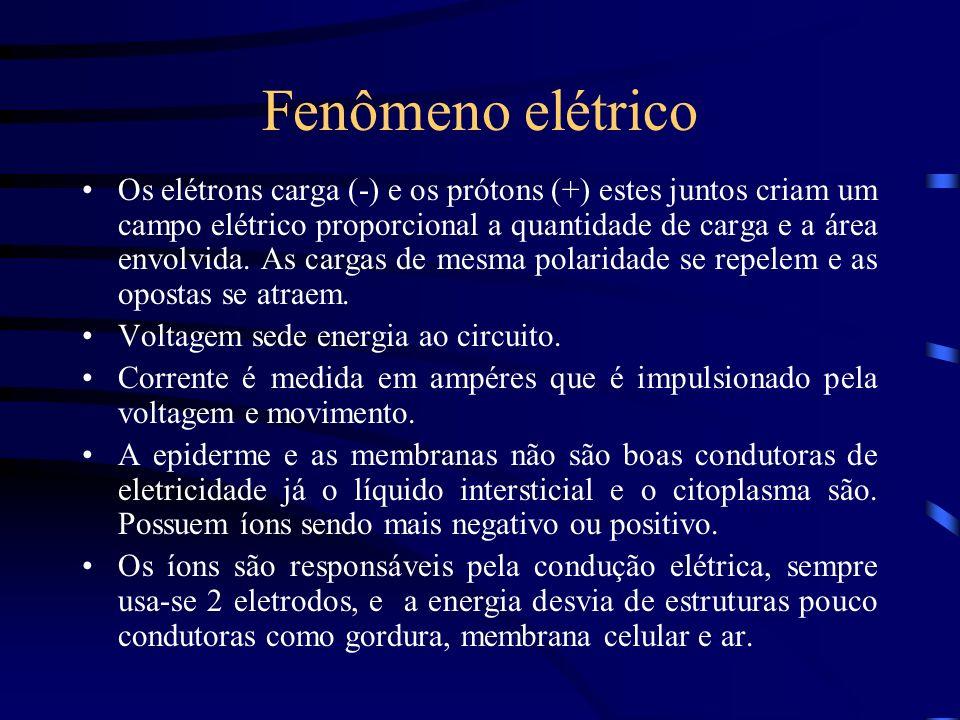 Fenômeno elétrico Os elétrons carga (-) e os prótons (+) estes juntos criam um campo elétrico proporcional a quantidade de carga e a área envolvida. A