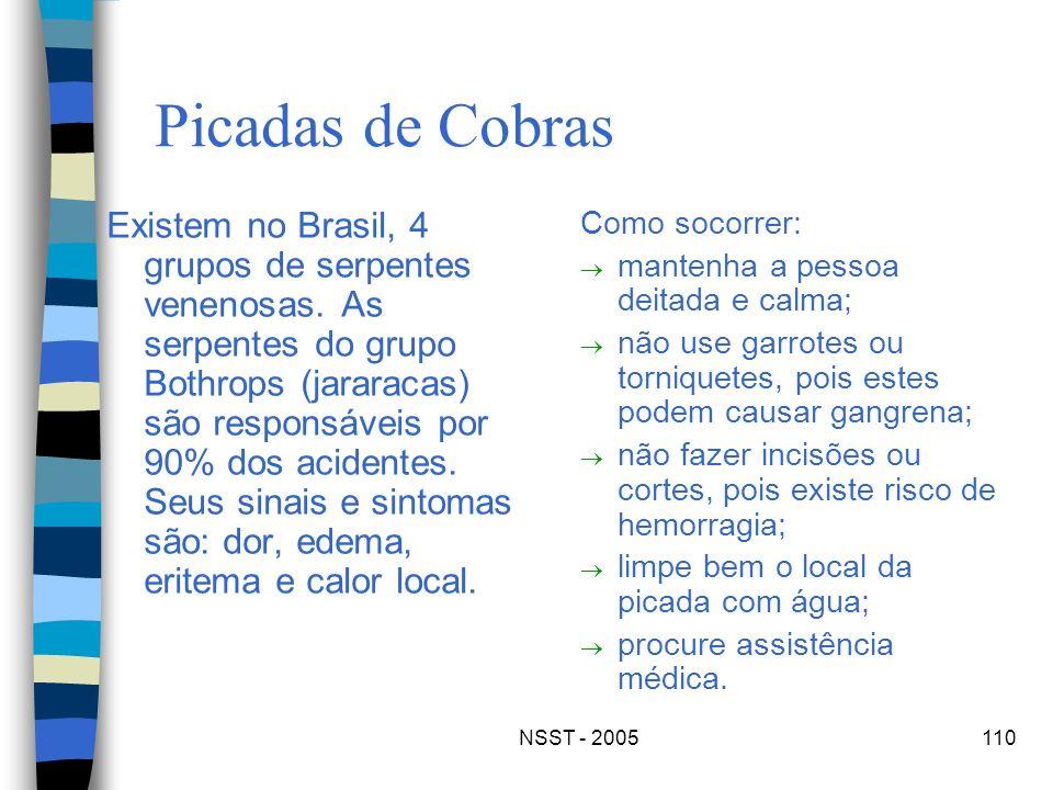 NSST - 2005110 Picadas de Cobras Existem no Brasil, 4 grupos de serpentes venenosas. As serpentes do grupo Bothrops (jararacas) são responsáveis por 9
