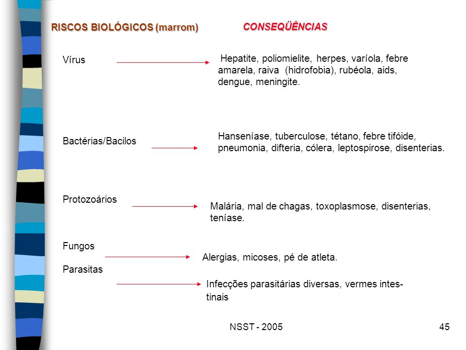 NSST - 200545 Vírus Bactérias/Bacilos Protozoários Fungos Parasitas RISCOS BIOLÓGICOS (marrom) CONSEQÜÊNCIAS Hepatite, poliomielite, herpes, varíola,
