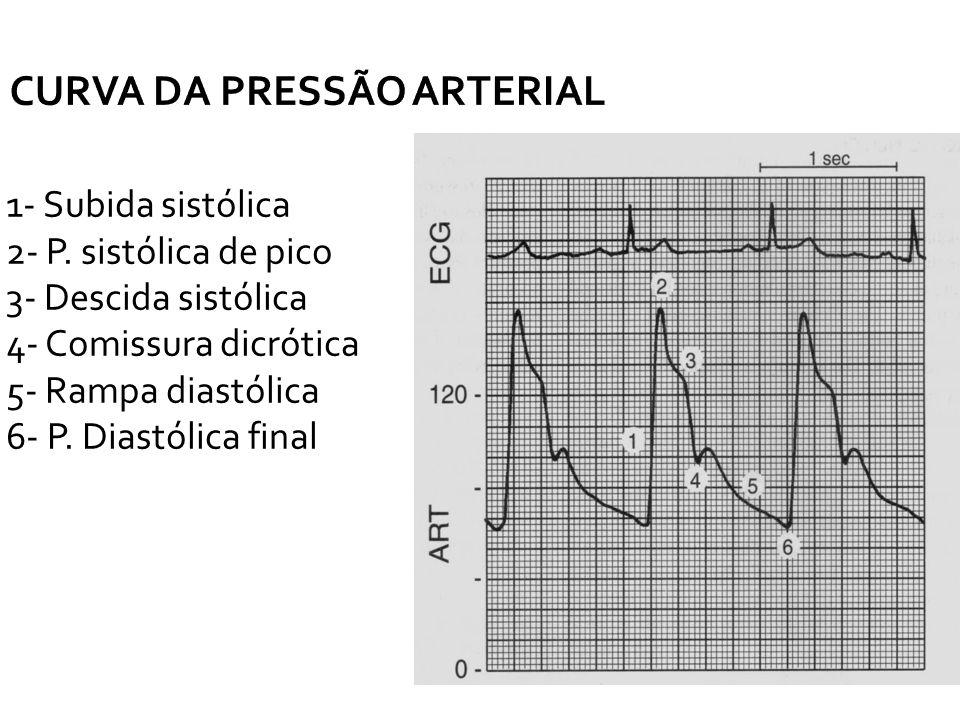 CURVA DA PRESSÃO ARTERIAL 1- Subida sistólica 2- P. sistólica de pico 3- Descida sistólica 4- Comissura dicrótica 5- Rampa diastólica 6- P. Diastólica