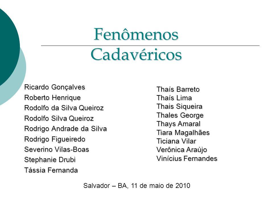 CONCEITO CONCEITO FENÔMENOS ABIÓTICOS IMEDIATOS FENÔMENOS ABIÓTICOS IMEDIATOS FENÔMENOS ABIÓTICOS CONSECUTIVOS FENÔMENOS ABIÓTICOS CONSECUTIVOS FENÔMENOS TRANFORMATIVOS FENÔMENOS TRANFORMATIVOS Diagnóstico da realidade de morte