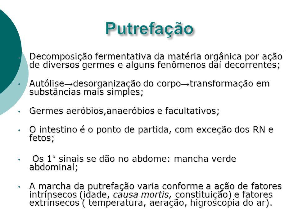 Decomposição fermentativa da matéria orgânica por ação de diversos germes e alguns fenômenos daí decorrentes; Decomposição fermentativa da matéria org