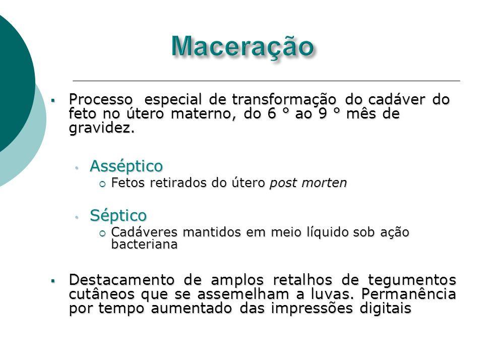 Processo especial de transformação do cadáver do feto no útero materno, do 6 ° ao 9 ° mês de gravidez. Processo especial de transformação do cadáver d