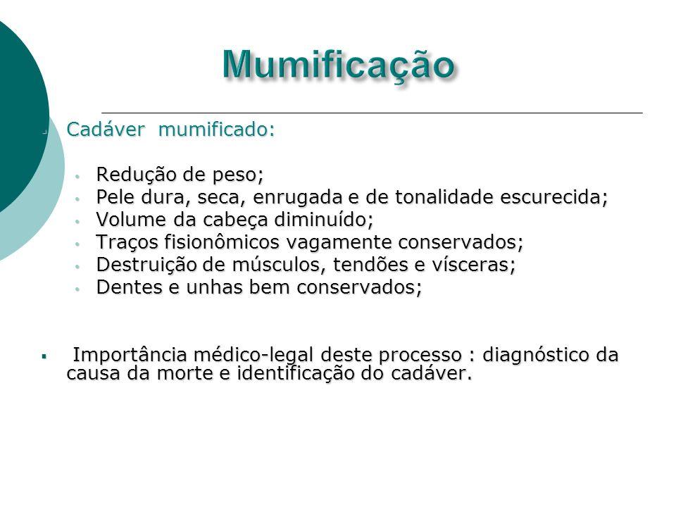 Cadáver mumificado: Cadáver mumificado: Redução de peso; Redução de peso; Pele dura, seca, enrugada e de tonalidade escurecida; Pele dura, seca, enrug