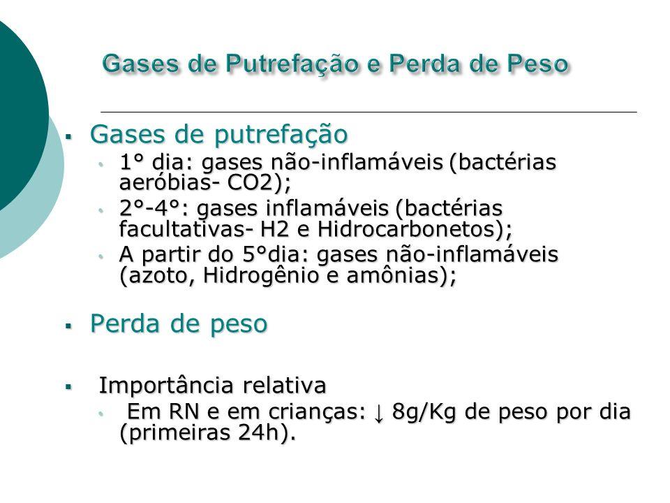 Gases de putrefação Gases de putrefação 1° dia: gases não-inflamáveis (bactérias aeróbias- CO2); 1° dia: gases não-inflamáveis (bactérias aeróbias- CO