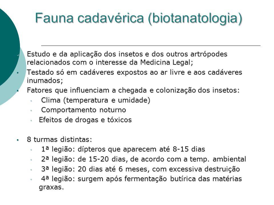 Estudo e da aplicação dos insetos e dos outros artrópodes relacionados com o interesse da Medicina Legal; Estudo e da aplicação dos insetos e dos outr