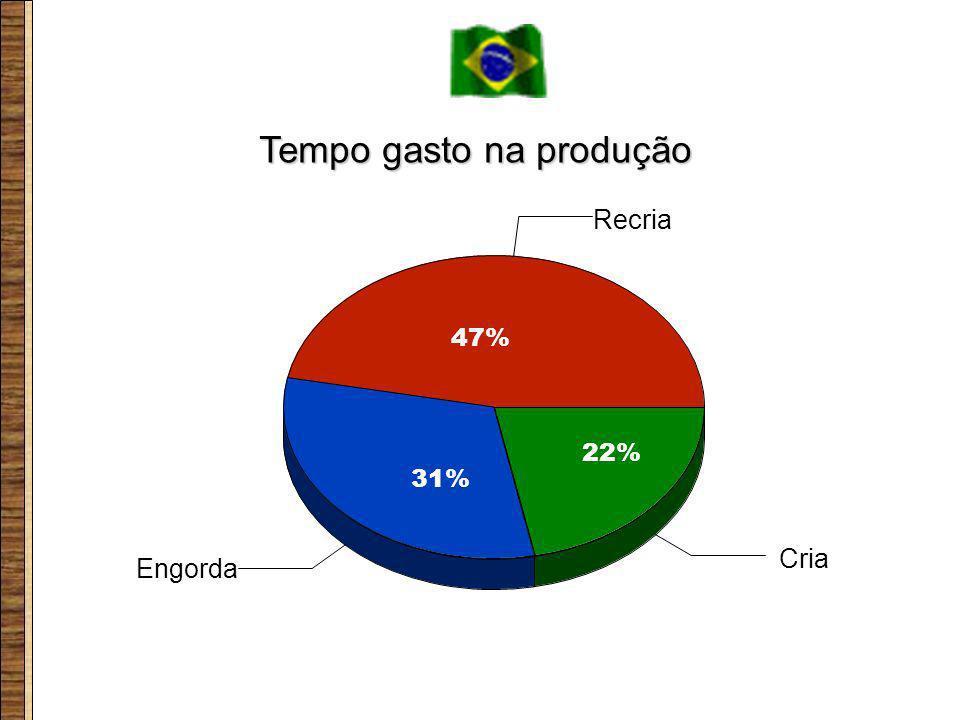 Engorda Recria Cria 47% 31% 22% Tempo gasto na produção