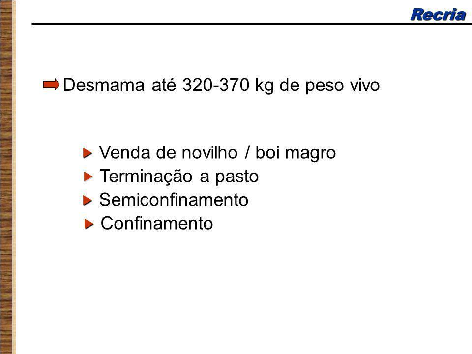 Recria Desmama até 320-370 kg de peso vivo Terminação a pasto Confinamento Semiconfinamento Venda de novilho / boi magro