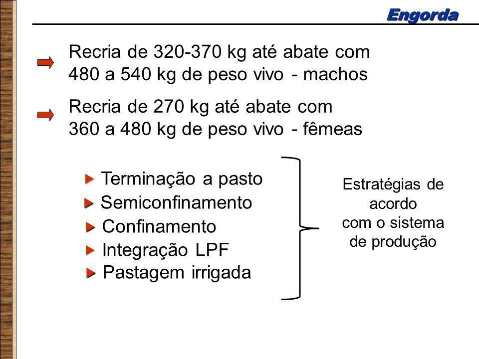 Engorda Recria de 320-370 kg até abate com 480 a 540 kg de peso vivo - machos Terminação a pasto Confinamento Semiconfinamento Recria de 270 kg até ab