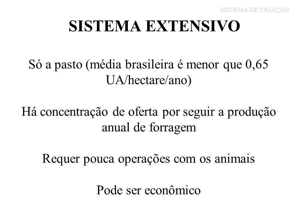 SISTEMA DE CRIAÇÃO SISTEMA EXTENSIVO Só a pasto (média brasileira é menor que 0,65 UA/hectare/ano) Há concentração de oferta por seguir a produção anu