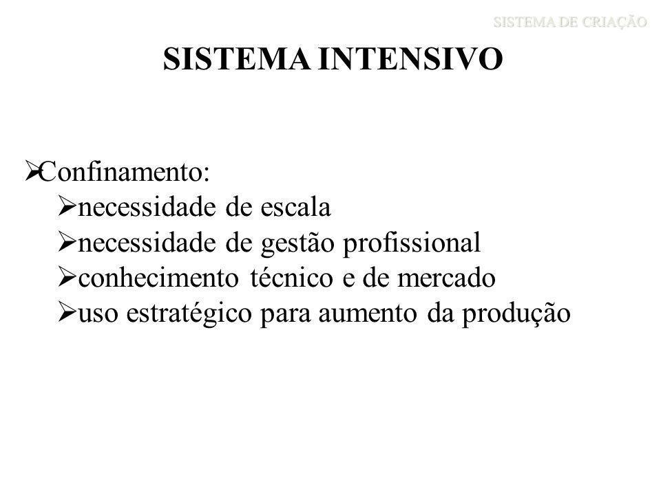 SISTEMA DE CRIAÇÃO SISTEMA INTENSIVO Confinamento: necessidade de escala necessidade de gestão profissional conhecimento técnico e de mercado uso estr
