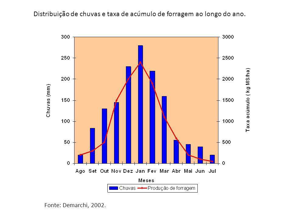 Distribuição de chuvas e taxa de acúmulo de forragem ao longo do ano. Fonte: Demarchi, 2002.