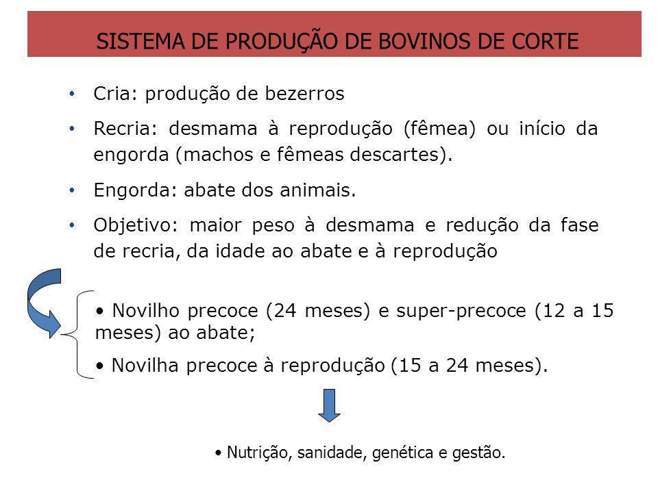 Cria: produção de bezerros Recria: desmama à reprodução (fêmea) ou início da engorda (machos e fêmeas descartes). Engorda: abate dos animais. Objetivo