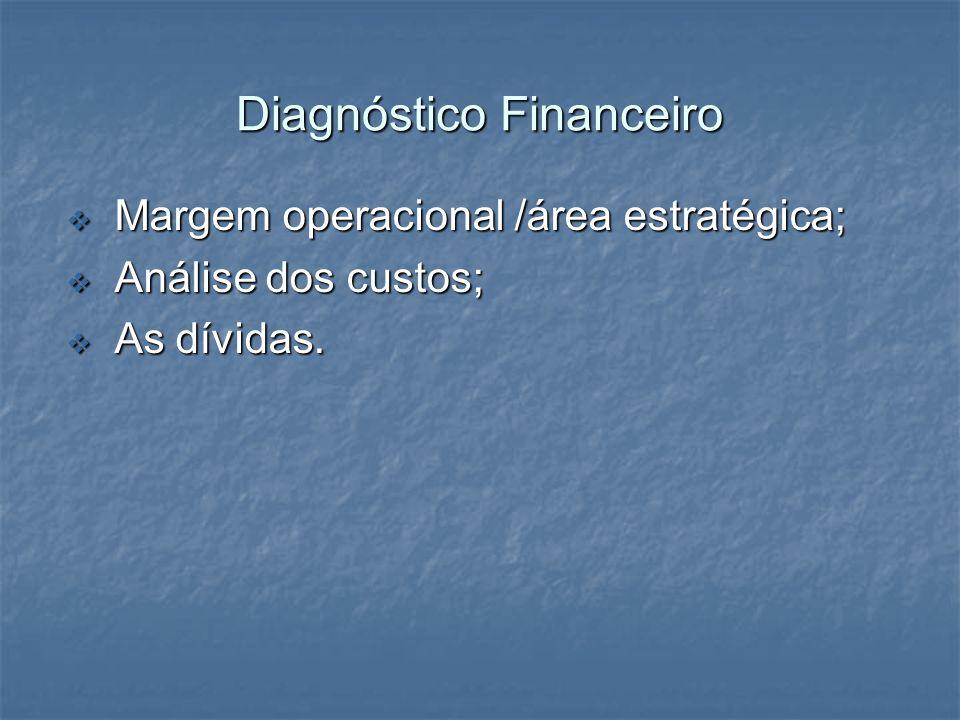 Diagnóstico Financeiro Margem operacional /área estratégica; Margem operacional /área estratégica; Análise dos custos; Análise dos custos; As dívidas.