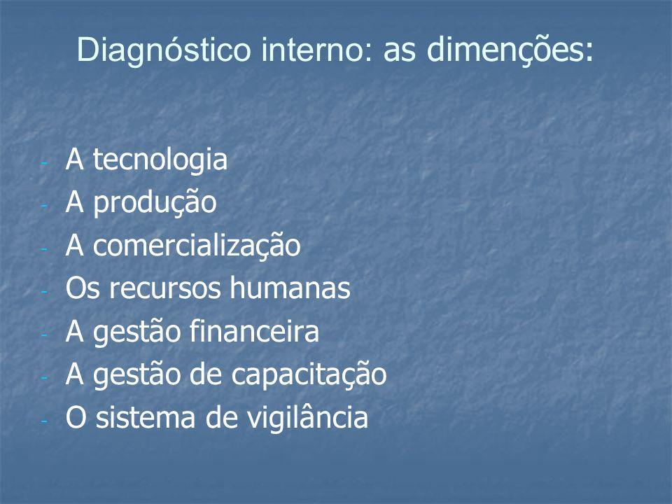 Diagnóstico interno: as dimenções: - - A tecnologia - - A produção - - A comercialização - - Os recursos humanas - - A gestão financeira - - A gestão