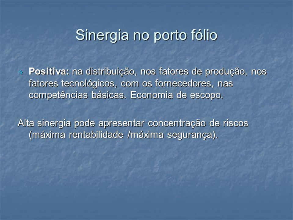 Sinergia no porto fólio Positiva: na distribuição, nos fatores de produção, nos fatores tecnológicos, com os fornecedores, nas competências básicas. E