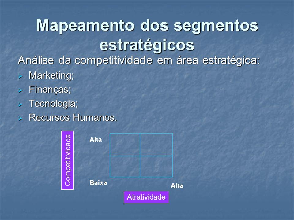 Mapeamento dos segmentos estratégicos Análise da competitividade em área estratégica: Marketing; Marketing; Finanças; Finanças; Tecnologia; Tecnologia
