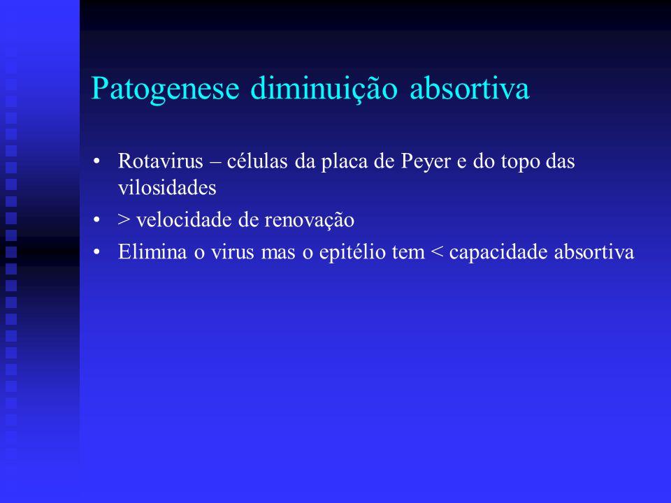 Patogenese diminuição absortiva Rotavirus – células da placa de Peyer e do topo das vilosidades > velocidade de renovação Elimina o virus mas o epitél