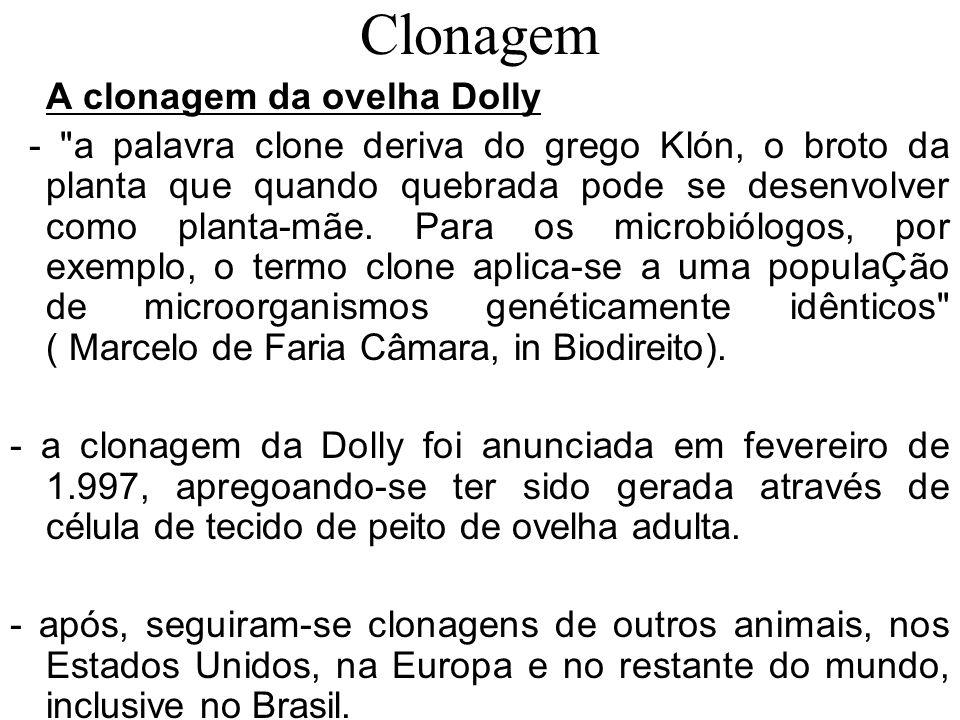 Clonagem Clonagem natural 1- as bactérias são cópias genéticas da mãe, reproduzindo-se por duplicação; 2- nos vegetais, não são incomuns plantas em que uma única célula da raiz se desenvolve até virar uma réplica da árvore-mãe; 3- nos animais, a clonagem natural leva à formação de gêmeos idênticos, os univitelinos.