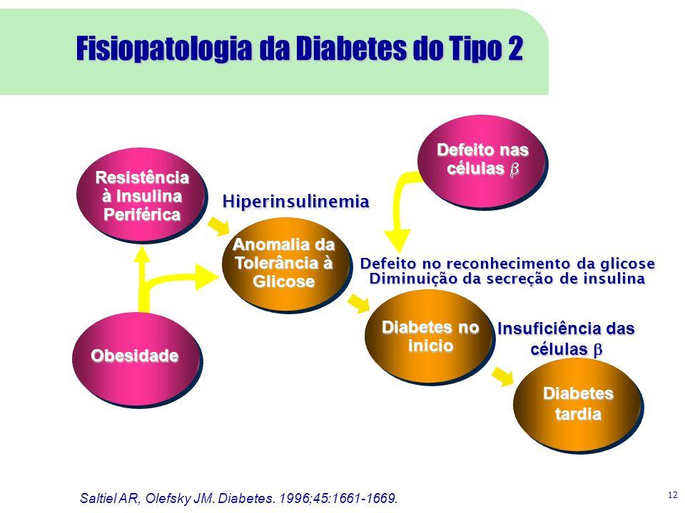 12 Resistência à Insulina Periférica Anomalia da Tolerância à Glicose Diabetes no inicio Diabetes tardia Hiperinsulinemia Defeito no reconhecimento da glicose Diminuição da secreção de insulina Insuficiência das células Insuficiência das células Saltiel AR, Olefsky JM.
