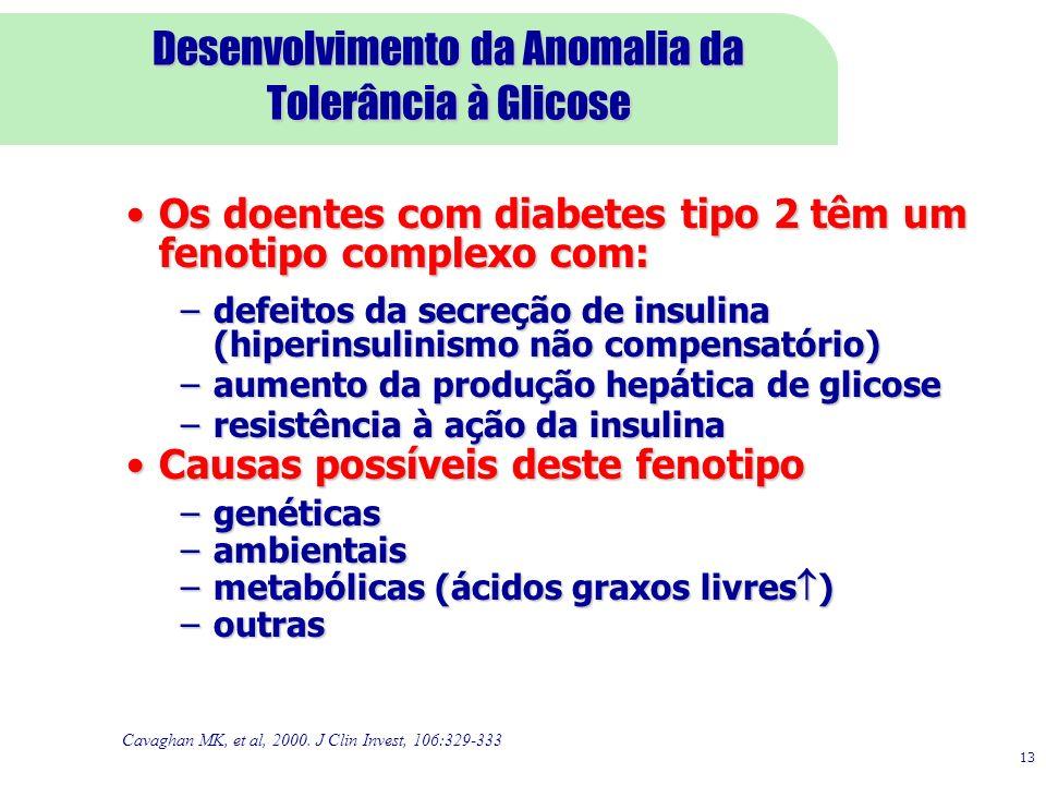 13 Desenvolvimento da Anomalia da Tolerância à Glicose Cavaghan MK, et al, 2000. J Clin Invest, 106:329-333 Os doentes com diabetes tipo 2 têm um feno