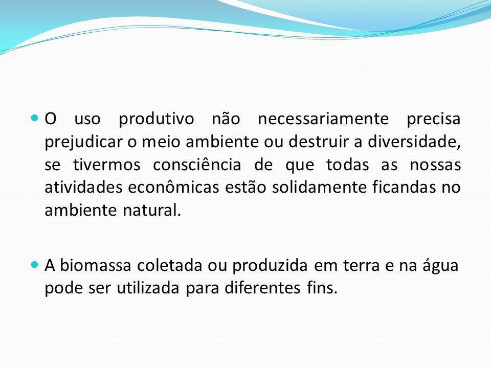 O uso produtivo não necessariamente precisa prejudicar o meio ambiente ou destruir a diversidade, se tivermos consciência de que todas as nossas ativi