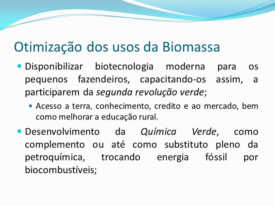 Otimização dos usos da Biomassa Disponibilizar biotecnologia moderna para os pequenos fazendeiros, capacitando-os assim, a participarem da segunda rev