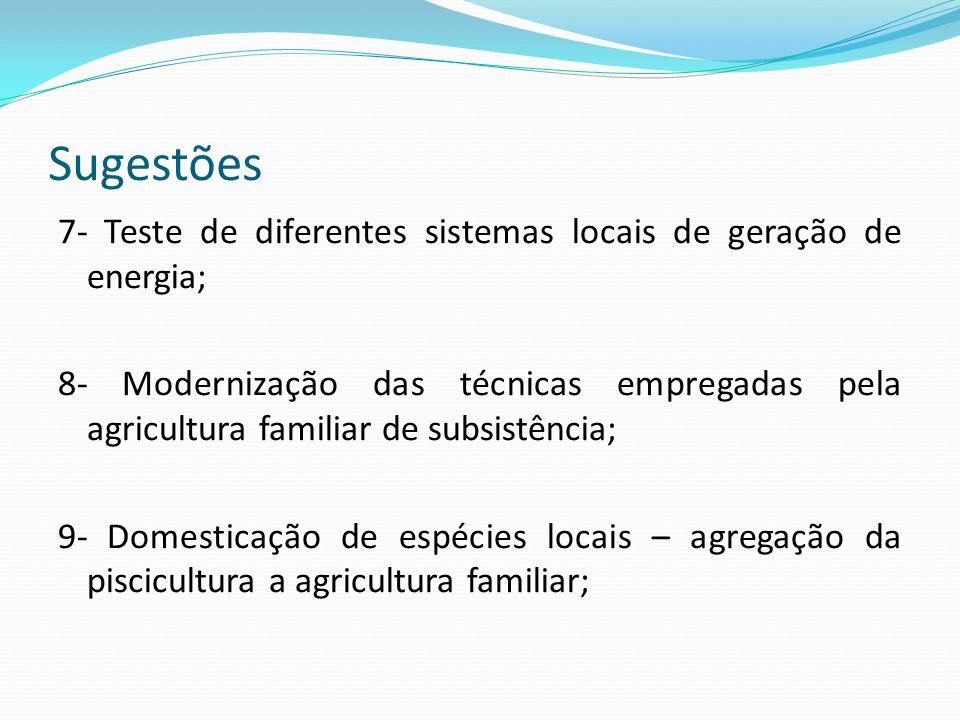 Sugestões 7- Teste de diferentes sistemas locais de geração de energia; 8- Modernização das técnicas empregadas pela agricultura familiar de subsistên