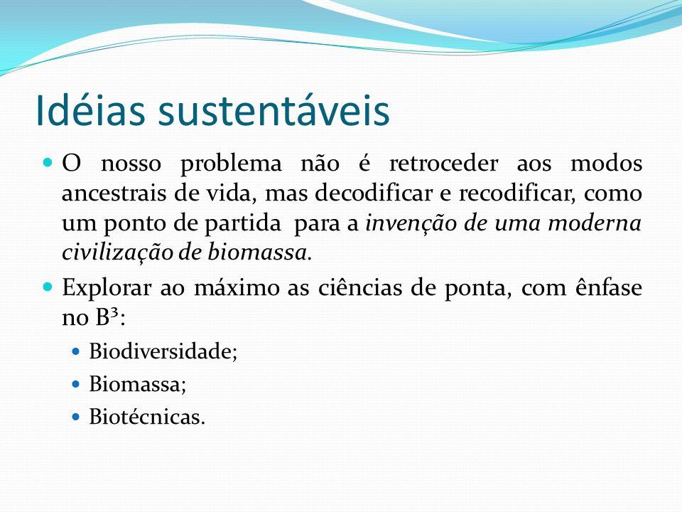 O Clima Tropical Portanto, os países tropicais, de modo geral, e o Brasil, em particular, tem hoje uma chance de pular etapas para chegar a uma moderna civilização de biomassa; Relevância social, prudência ecológica e viabilidade econômica ( pilares do desenvolvimento sustentável).