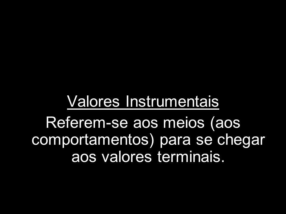 Valores Instrumentais Referem-se aos meios (aos comportamentos) para se chegar aos valores terminais.