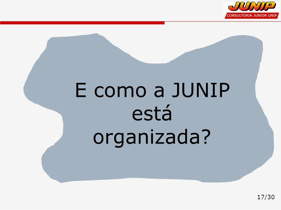 17/30 E como a JUNIP está organizada?