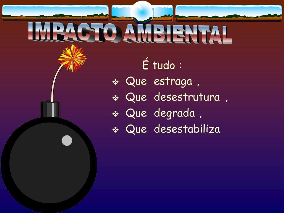 SUMÁRIO EXECUTIVO DO IPCC PAINEL INTERGOVERNAMENTAL DE MUDANÇAS CLIMÁTICAS É MUITO PROVÁVEL QUE O INCREMENTO DA TEMPERATURA MÉDIA GLOBAL SEJA DEVIDO AO AUMENTO DOS GASES DE EFEITO-ESTUFA (GEE) A CONCENTRAÇÃO DE CO 2 EM 2005 (379 PPMV) ULTRAPASSOU O LIMITE NATURAL (180 A 300 PPMV) NOS ÚLTIMOS 650 MIL ANOS