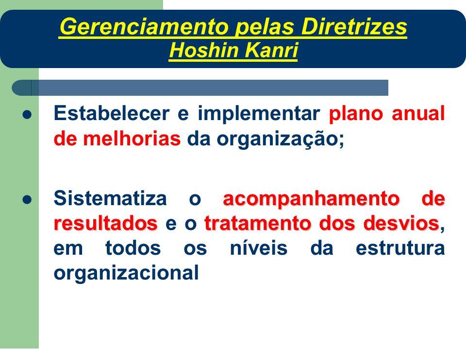 Estabelecer e implementar plano anual de melhorias da organização; acompanhamento de resultadostratamento dos desvios Sistematiza o acompanhamento de