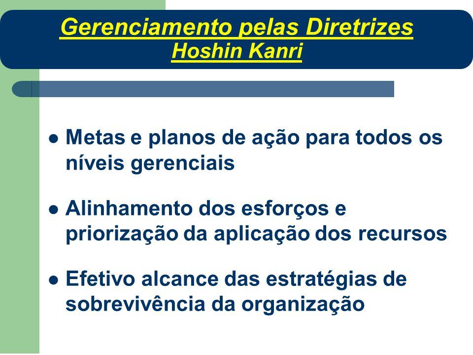 Metas e planos de ação para todos os níveis gerenciais Alinhamento dos esforços e priorização da aplicação dos recursos Efetivo alcance das estratégia