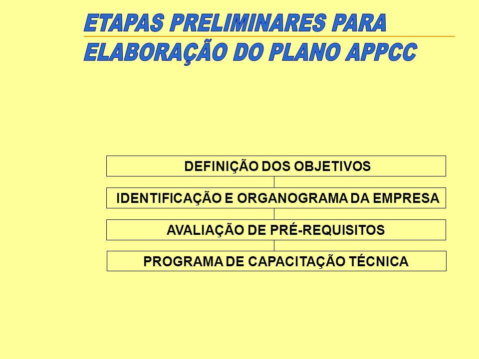 DEFINIÇÃO DOS OBJETIVOS IDENTIFICAÇÃO E ORGANOGRAMA DA EMPRESA AVALIAÇÃO DE PRÉ-REQUISITOS PROGRAMA DE CAPACITAÇÃO TÉCNICA