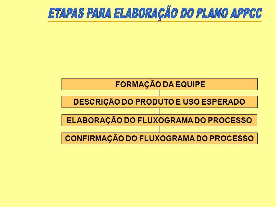 DESCRIÇÃO DO PRODUTO E USO ESPERADO ELABORAÇÃO DO FLUXOGRAMA DO PROCESSO CONFIRMAÇÃO DO FLUXOGRAMA DO PROCESSO FORMAÇÃO DA EQUIPE