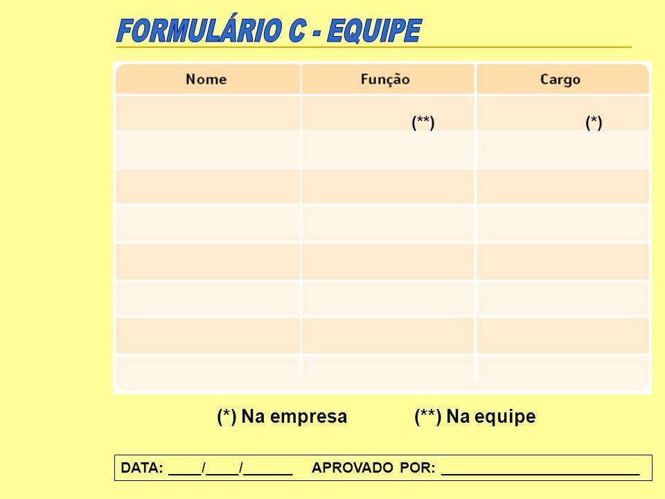 (*) Na empresa(**) Na equipe (**)(*) DATA: ____/____/______ APROVADO POR: ________________________