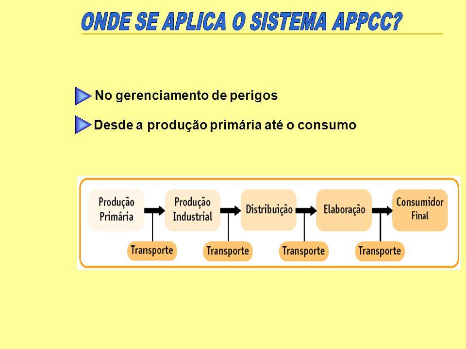 Equipe APPCC e definições de responsabilidades Descrição do produto ou grupo de produtos, e do uso pretendido Diagrama de fluxo do processo e sua descrição Bases para identificação dos PCC Perigos significativos