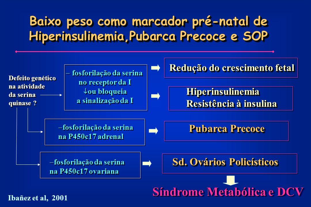 Baixo peso como marcador pré-natal de Hiperinsulinemia,Pubarca Precoce e SOP Defeito genético na atividade da serina quinase .