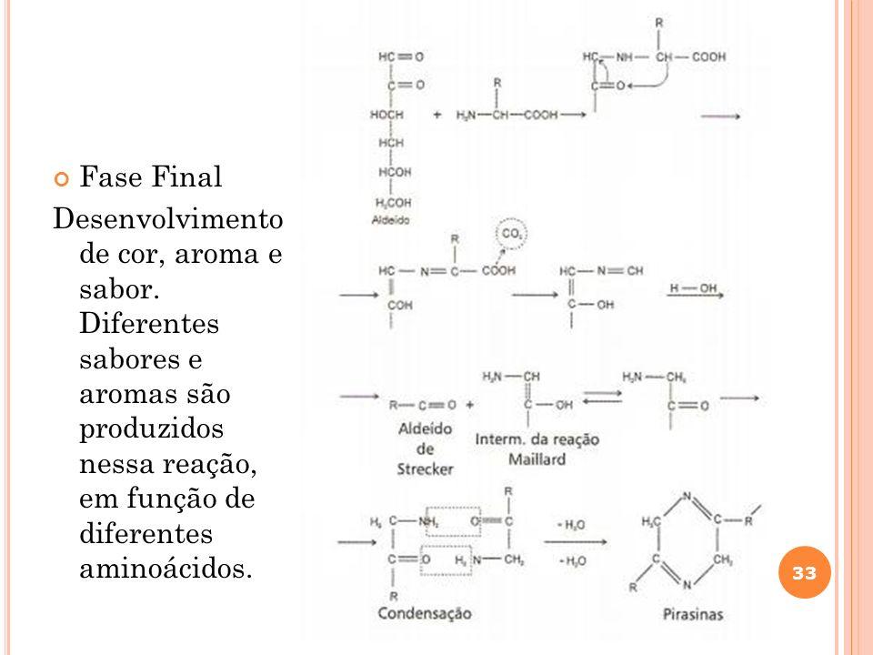 Fase Final Desenvolvimento de cor, aroma e sabor. Diferentes sabores e aromas são produzidos nessa reação, em função de diferentes aminoácidos. 33