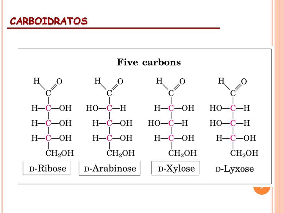 9 CARBOIDRATOS