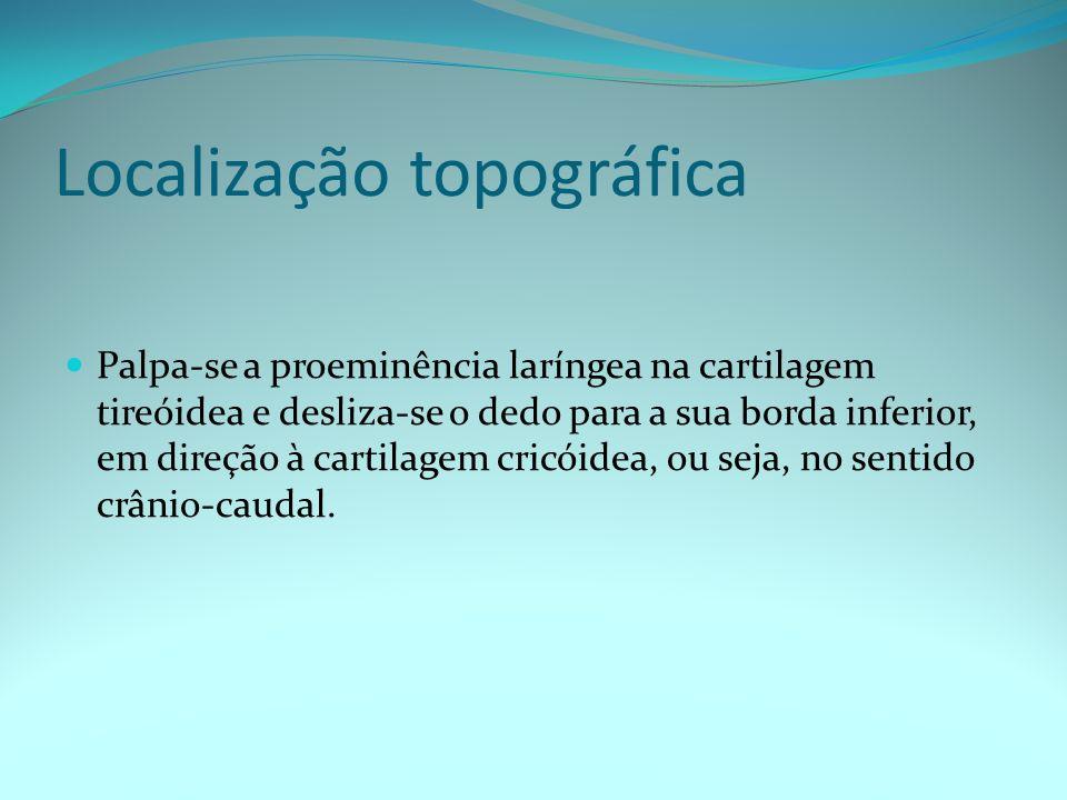 Localização topográfica Palpa-se a proeminência laríngea na cartilagem tireóidea e desliza-se o dedo para a sua borda inferior, em direção à cartilage