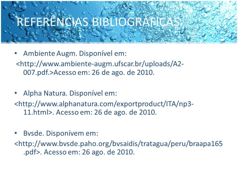 REFERÊNCIAS BIBLIOGRÁFICAS Ambiente Augm. Disponível em: Acesso em: 26 de ago. de 2010. Alpha Natura. Disponível em:. Acesso em: 26 de ago. de 2010. B