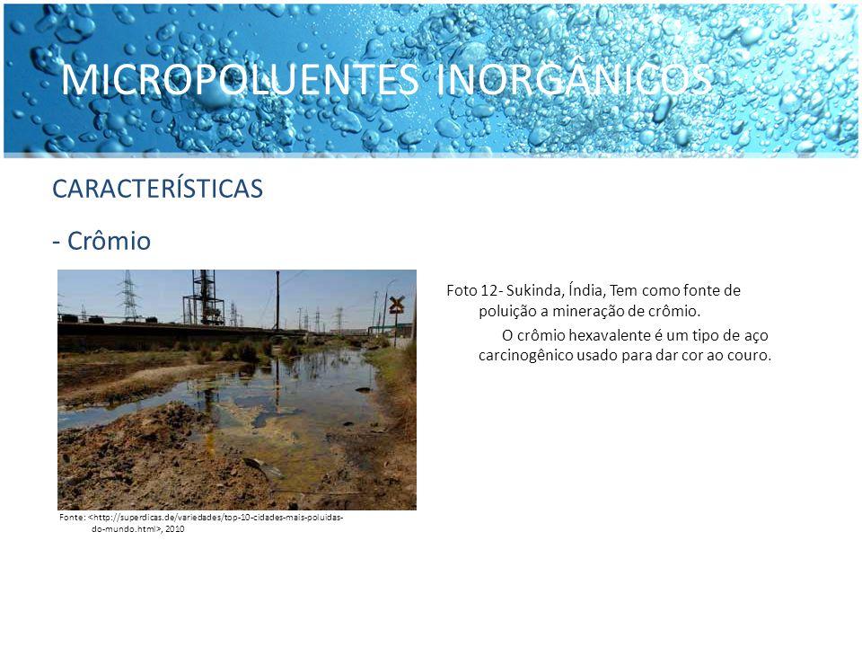 MICROPOLUENTES INORGÂNICOS CARACTERÍSTICAS - Chumbo Fonte:, 2010 Foto 13 - Chumbo em pó.