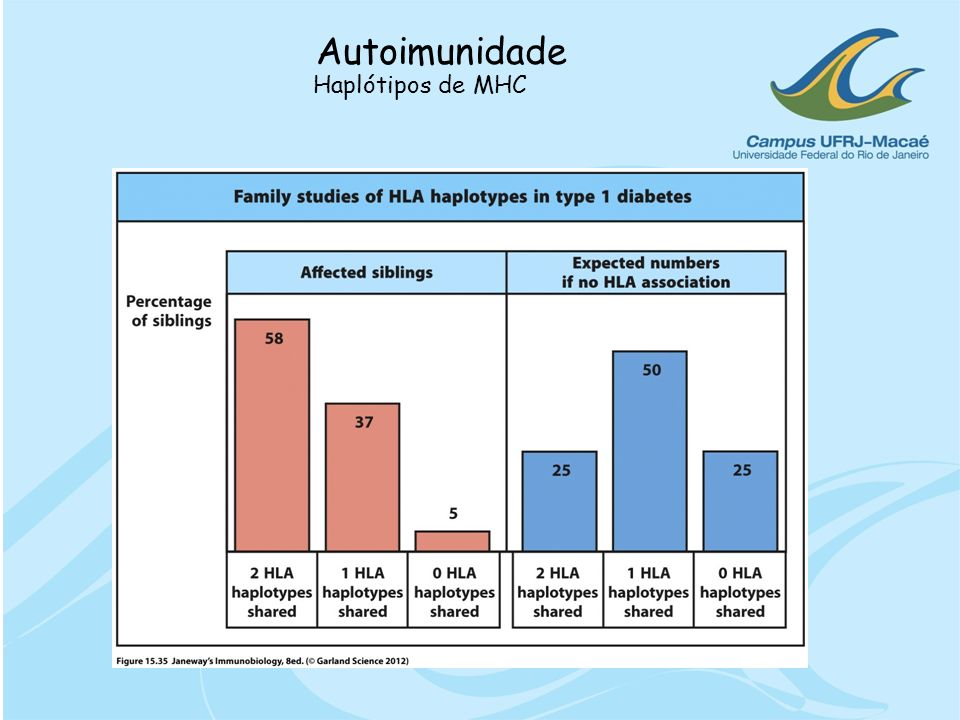 Autoimunidade Haplótipos de MHC