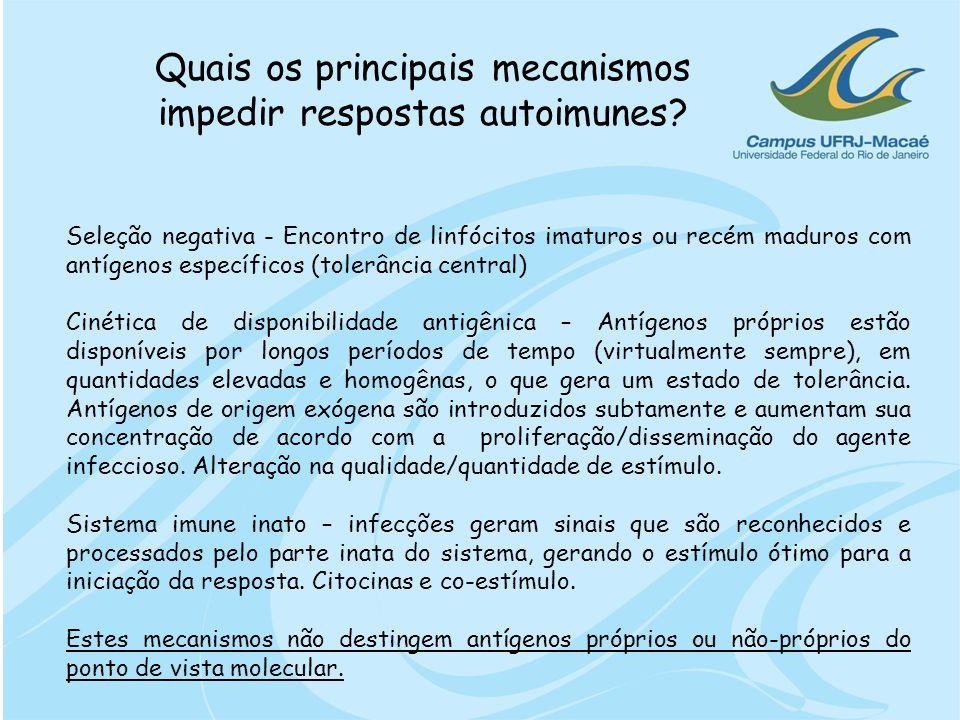 Quais os principais mecanismos impedir respostas autoimunes? Seleção negativa - Encontro de linfócitos imaturos ou recém maduros com antígenos específ