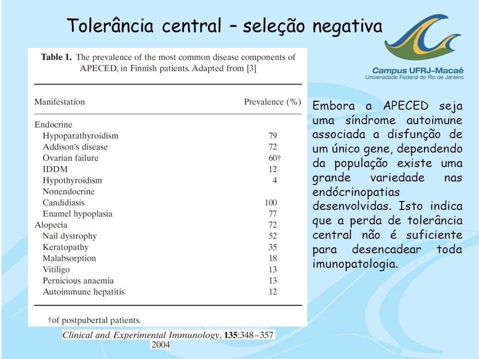 Tolerância central – seleção negativa Embora a APECED seja uma síndrome autoimune associada a disfunção de um único gene, dependendo da população exis