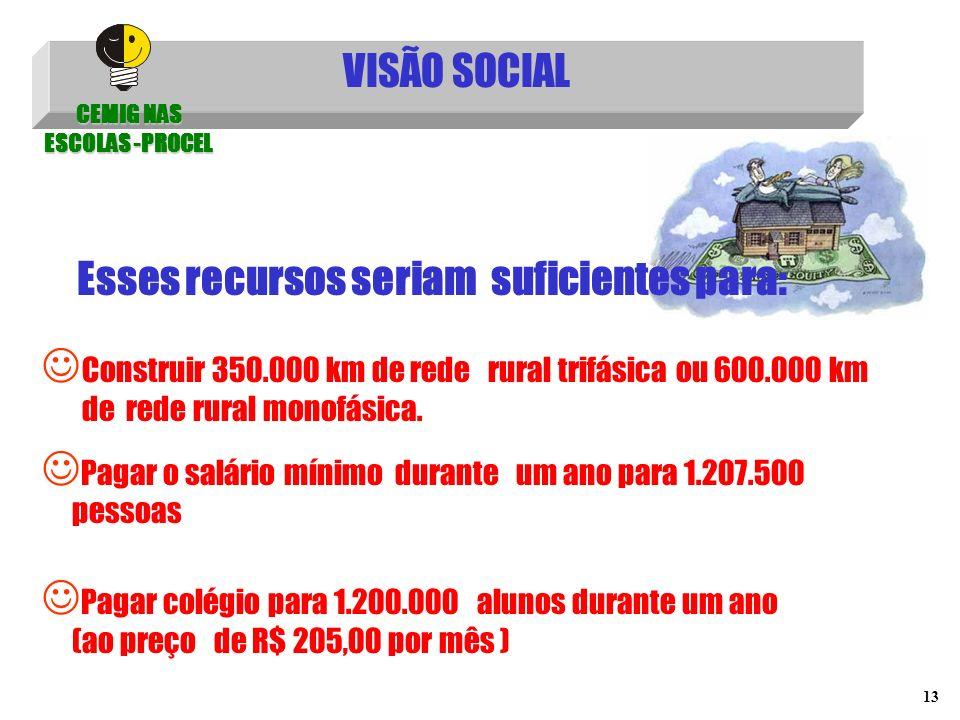 13 VISÃO SOCIAL Construir 350.000 km de rede rural trifásica ou 600.000 km de rede rural monofásica. Esses recursos seriam suficientes para: CEMIG NAS